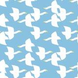 Seamless bird pattern. Seamless pattern, bird vector art  background design for fabric and decor Stock Photography