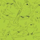 Seamless bird theme pattern Stock Photography