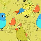 Seamless bird theme pattern Royalty Free Stock Photography