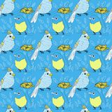 Seamless bird theme pattern Royalty Free Stock Images