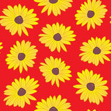 Seamless Black Eyed Susan Pattern Royalty Free Stock Photos