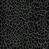 Seamless black leopard print. Royalty Free Stock Images