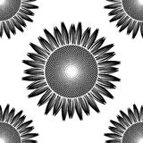Seamless black sunflower pattern vector Royalty Free Stock Image