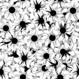Seamless black and white background pattern of dai Stock Photography