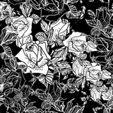 Seamless black and white background with roses Royalty Free Stock Photos