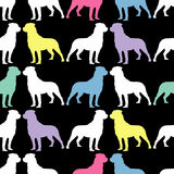 Seamless black and white decorative  background with decorative dogs Royalty Free Stock Image