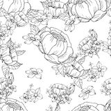Seamless black and white floral pattern Stock Images