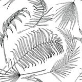 Seamless black and white pattern with exotic leaves on white background. Stock Images