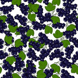 Seamless Blackcurrant Pattern Royalty Free Stock Photography