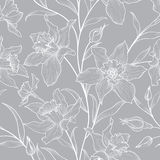 seamless blom- modell Inristad bakgrund för blomma klotter Royaltyfria Bilder