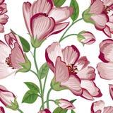 seamless blom- modell playnig för bakgrundsblommalampa Krusidulltextur med blommor stock illustrationer