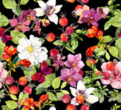 seamless blom- modell Sommarsidor, blommor mörk paper vattenfärgyellow för forntida bakgrund Royaltyfria Bilder