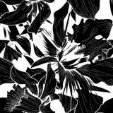 seamless blom- modell Svartvit bakgrund för blomma flor Arkivbild