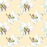 seamless blom- modell Vita liljor för vattenfärg, hand dragen botanisk illustration av blommor Royaltyfri Fotografi