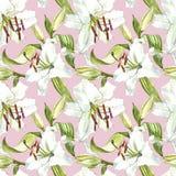 seamless blom- modell Vita liljor för vattenfärg, hand dragen botanisk illustration av blommor Fotografering för Bildbyråer