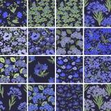 seamless blom- modeller Royaltyfri Bild