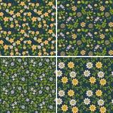 seamless blom- modeller Royaltyfria Foton