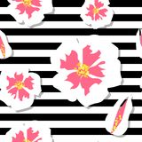 seamless blomningCherrymodell Royaltyfri Foto