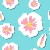 seamless blomningCherrymodell Royaltyfri Fotografi