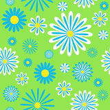 Seamless blue chamomiles pattern. Vector background Royalty Free Stock Photos