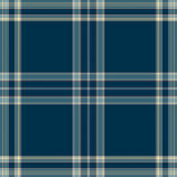 Seamless blue check texture. Stock Image