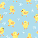 Seamless blue pattern with cute little chickens. stock illustration