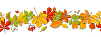 Seamless border Autumn falling leaf background isolated on white. Royalty Free Stock Images
