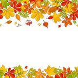Seamless border autumn falling leaf isolated on white background. Royalty Free Stock Photos