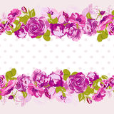 Seamless Border of blossom roses. Stock Images