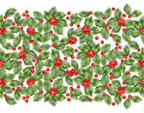 Seamless border from Christmas holly berry. EPS 10 vector Stock Image