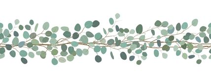 Seamless border of a eucalyptus branches. Floral frame. Vector hand drawn illustration. White background. Elegant seamless border of a eucalyptus branches royalty free illustration