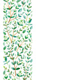 Seamless border from eucalyptus branches. Watercolor hand drawn illustration.White background Stock Photo
