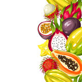Seamless border with exotic tropical fruits. Illustration of asian plants Stock Images