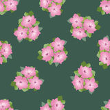 Seamless border with gentle pink flowers Stock Image