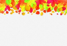Seamless border pattern of falling autumn leaves. Vector Royalty Free Illustration