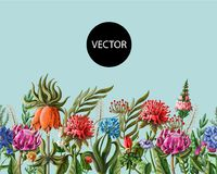 Seamless border with tropical flowers. Vector illustration. Seamless border with tropical flowers royalty free stock images