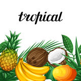 Seamless border with tropical fruits and leaves. Background made without clipping mask. Easy to use for backdrop Stock Image