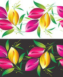 Seamless border of tulip flowers Stock Image
