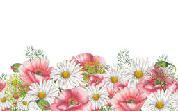 Seamless border of watercolor wildflowers. Seamless border of chamomile bouquet Stock Photo
