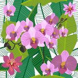 Green tropical background with blooming orchids and palm leaves. Seamless botanical pattern with aloha motifs. Trendy design for textile, cards and invitations Stock Images