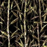 Seamless Botanical Pattern. Branches Of A Bamboo On A Black Background. Stylish Pattern For Textiles. Royalty Free Stock Photography