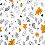 Seamless botanical  pattern. Stock Photos
