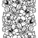 seamless botanisk modell Arkivfoton