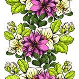 seamless botanisk modell Royaltyfria Foton