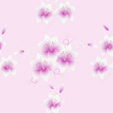 Seamless bouquet of lilies on a pink background. Royalty Free Stock Photos