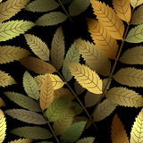 Seamless branch pattern Royalty Free Stock Image