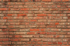 Seamless brick wall texture Stock Image