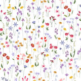 Seamless bright floral pattern with  different flowers. Stock Photography