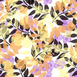 Seamless bright floral pattern on white. Background Stock Image