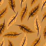 Seamless brown background with leaves and feathers Royalty Free Stock Images